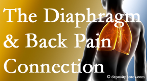 Pflugerville Wellness Center knows the relationship of the diaphragm to the body and spine and back pain.