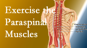 Pflugerville Wellness Center explains the importance of paraspinal muscles and their strength for Pflugerville back pain relief.