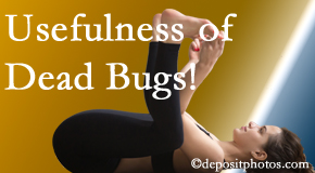 Pflugerville Wellness Center finds dead bugs quite useful in the healing process of Pflugerville back pain for many chiropractic patients.