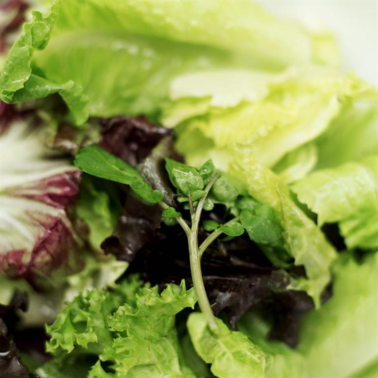 Lettuce for magnesium.